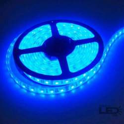 Tira LED 5mts 12v 60 leds/m IP20 SMD5050 azul